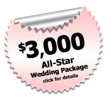 All Star Wedding DJ Package